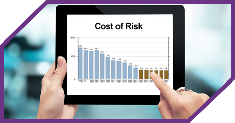 Cost of Risk Graphic